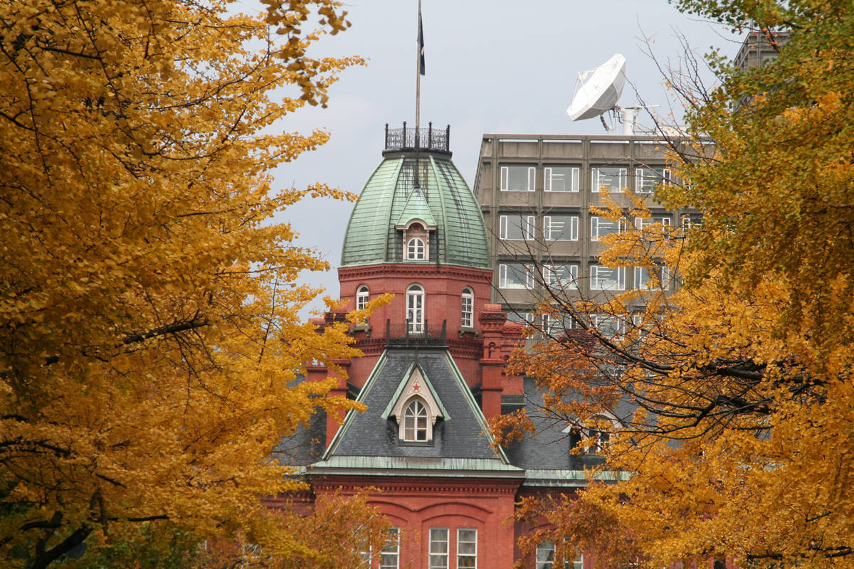 赤れんが庁舎 紅葉