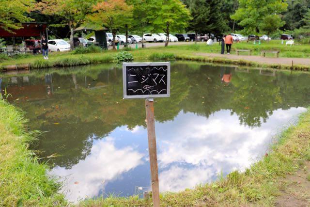 林中つりぼり ニジマスの池