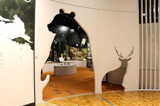 北海道博物館 動物たち