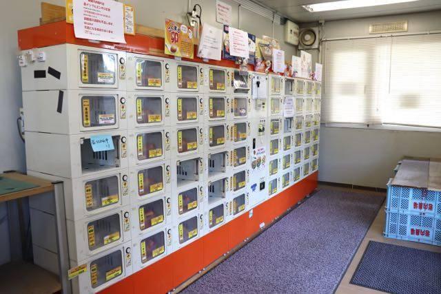 まちのたまご屋さんコッコちゃん 店内ロッカー販売機