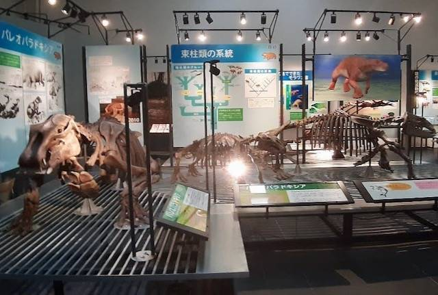 足寄動物化石博物館