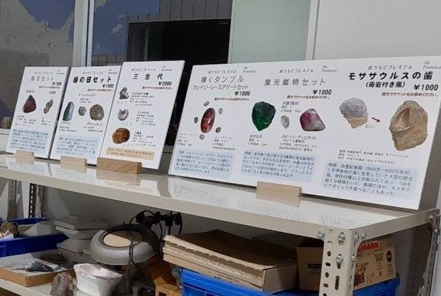 足寄動物化石博物館 発掘体験