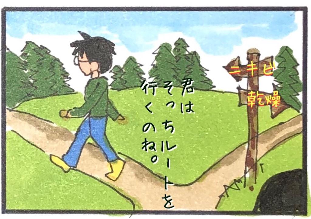 f:id:kitano-stop:20190127103755j:image