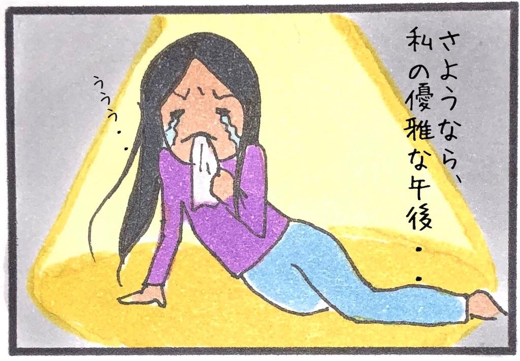 f:id:kitano-stop:20190214220515j:image