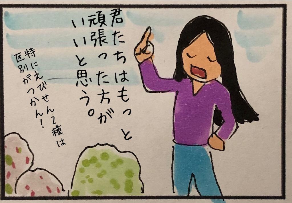 f:id:kitano-stop:20190320190820j:image