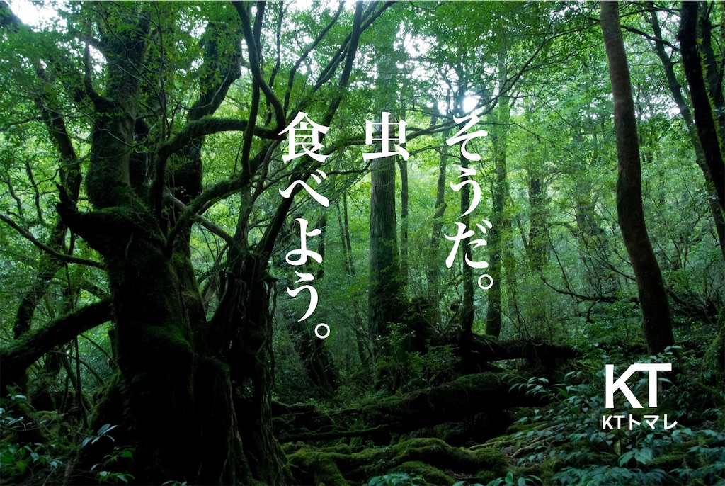 f:id:kitano-stop:20190412122312j:image