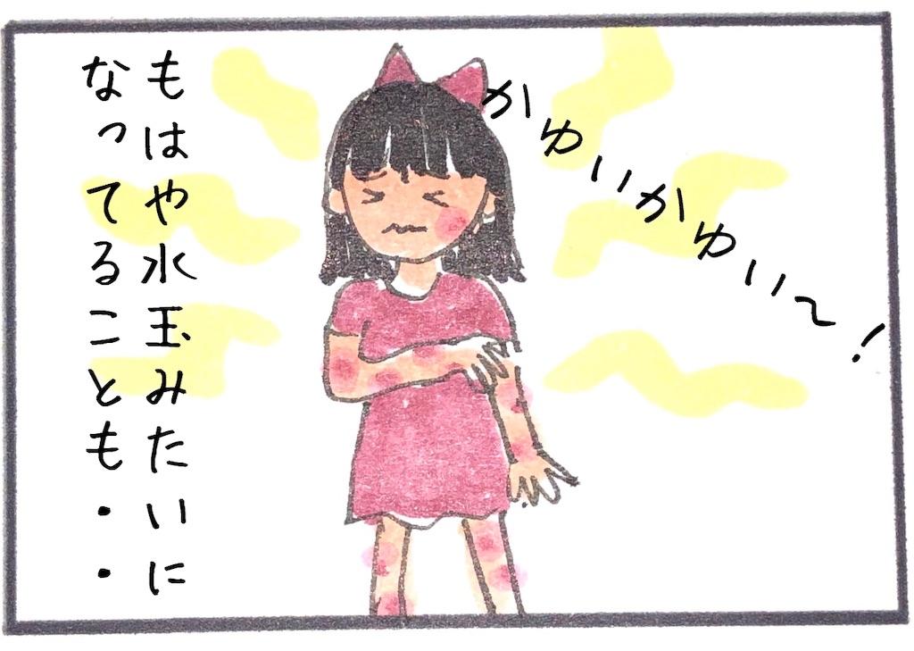 f:id:kitano-stop:20190607205520j:image