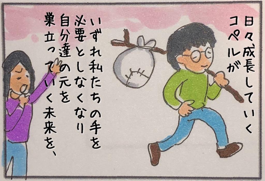 f:id:kitano-stop:20190727081712j:image