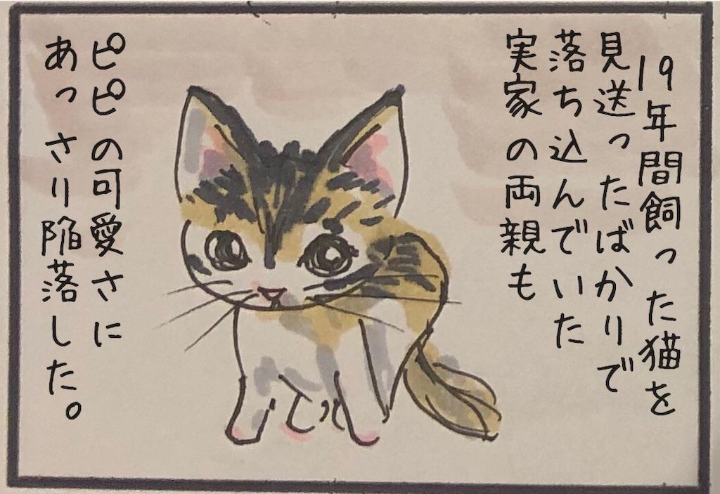 f:id:kitano-stop:20191026174707j:image