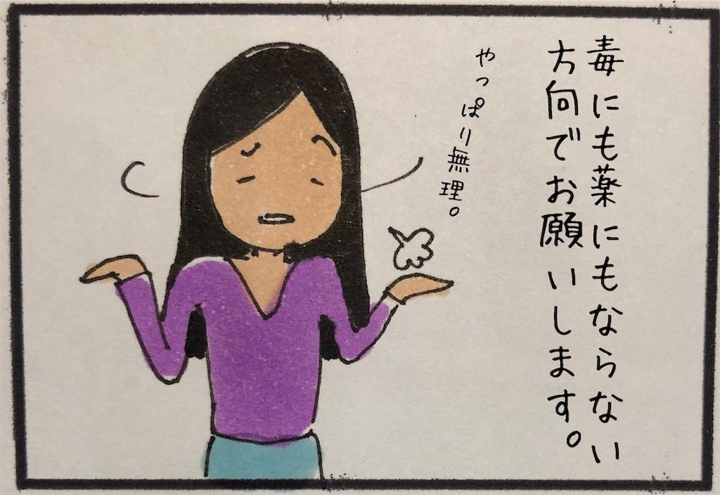 f:id:kitano-stop:20191114003421j:image