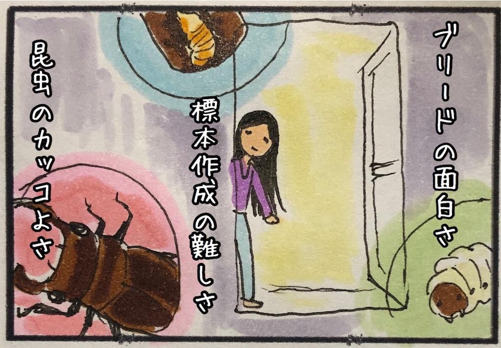 f:id:kitano-stop:20200711225306j:image
