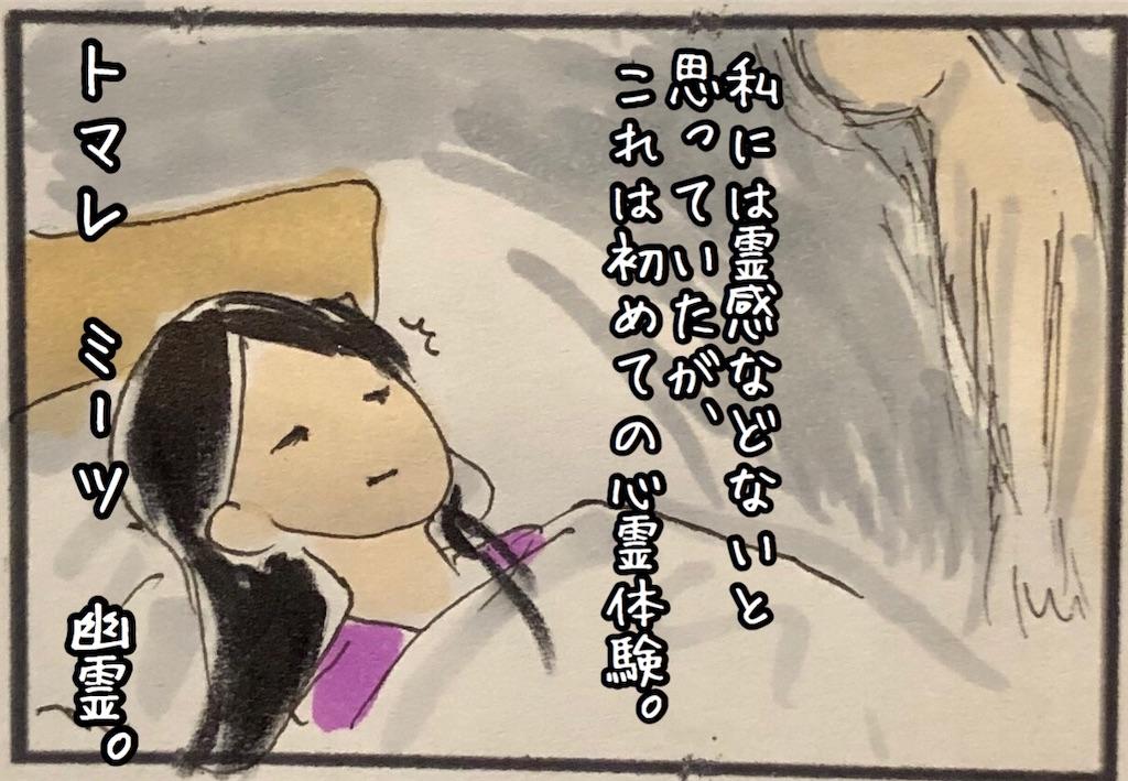 f:id:kitano-stop:20200714184653j:image