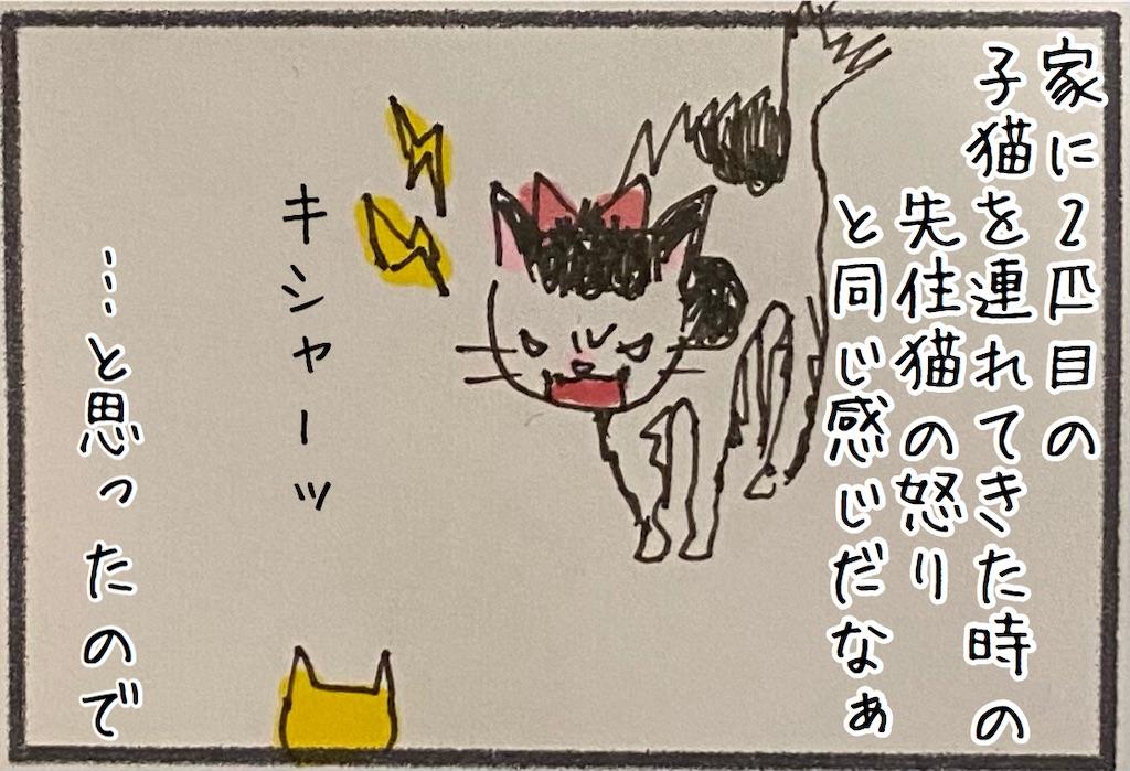 f:id:kitano-stop:20201106172542j:image