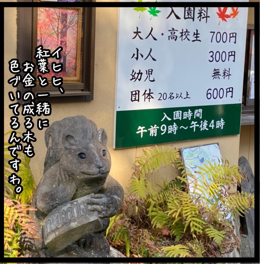 f:id:kitano-stop:20201117091647j:image