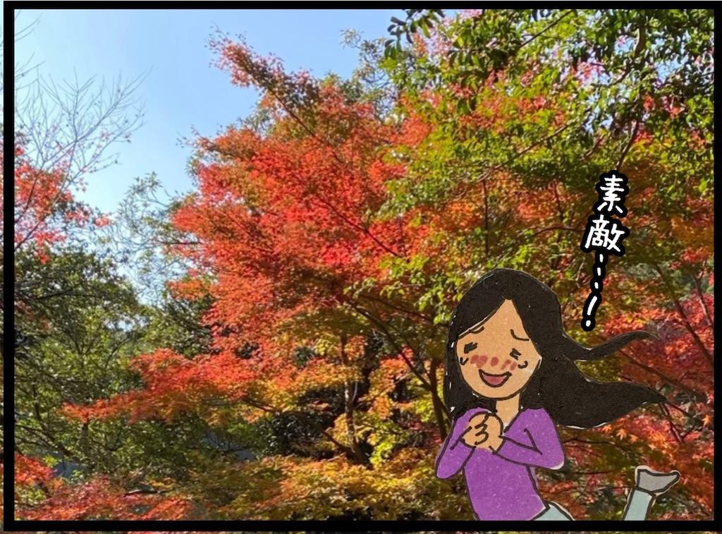 f:id:kitano-stop:20201117101527j:image