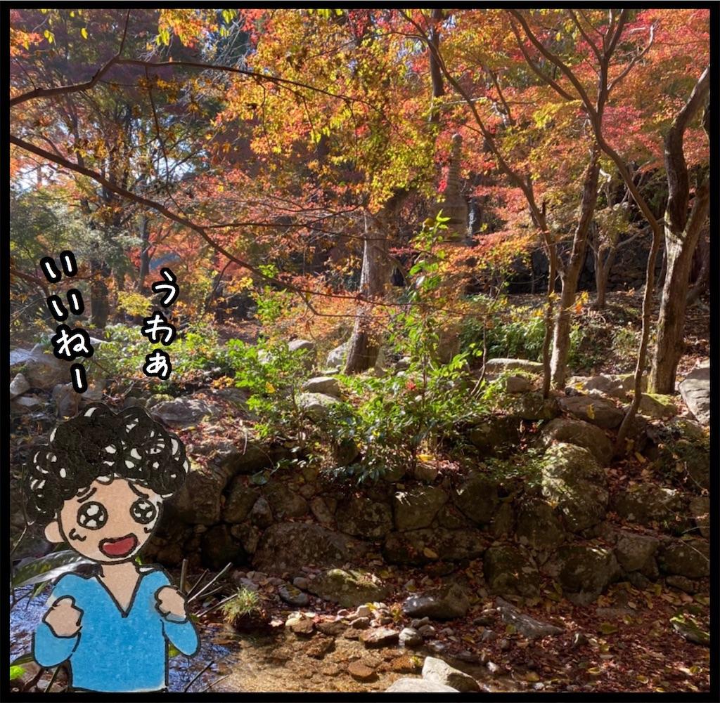 f:id:kitano-stop:20201117103514j:image