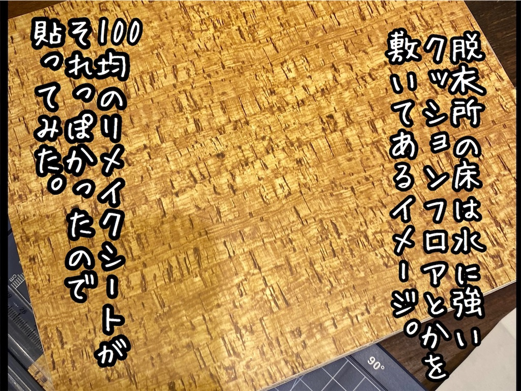 f:id:kitano-stop:20201231234550j:image