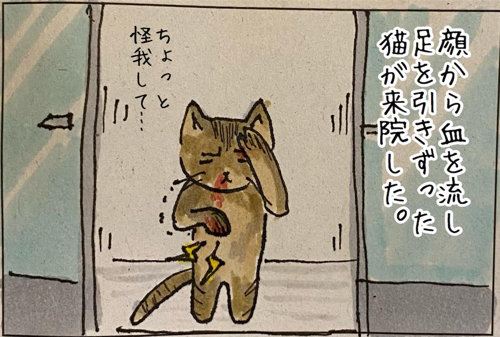 f:id:kitano-stop:20210912175142p:image