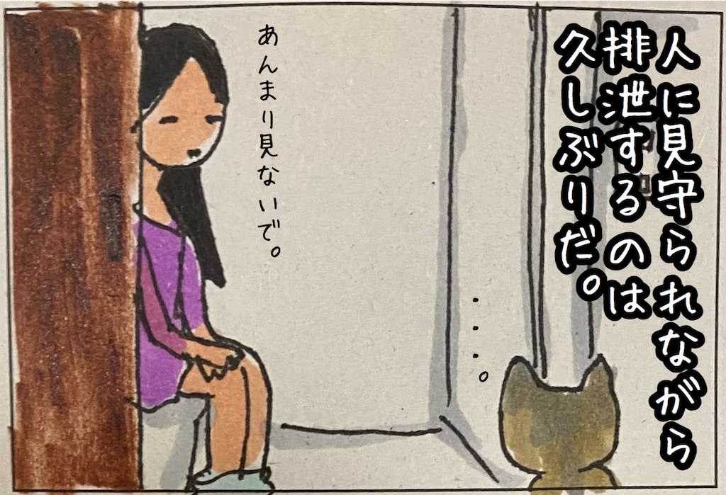 f:id:kitano-stop:20210918233037p:image