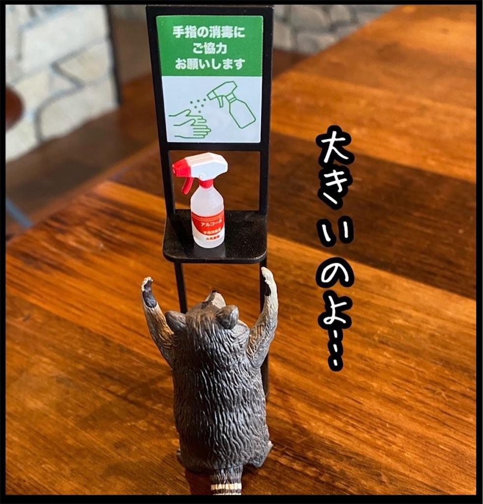 f:id:kitano-stop:20210927105315j:image