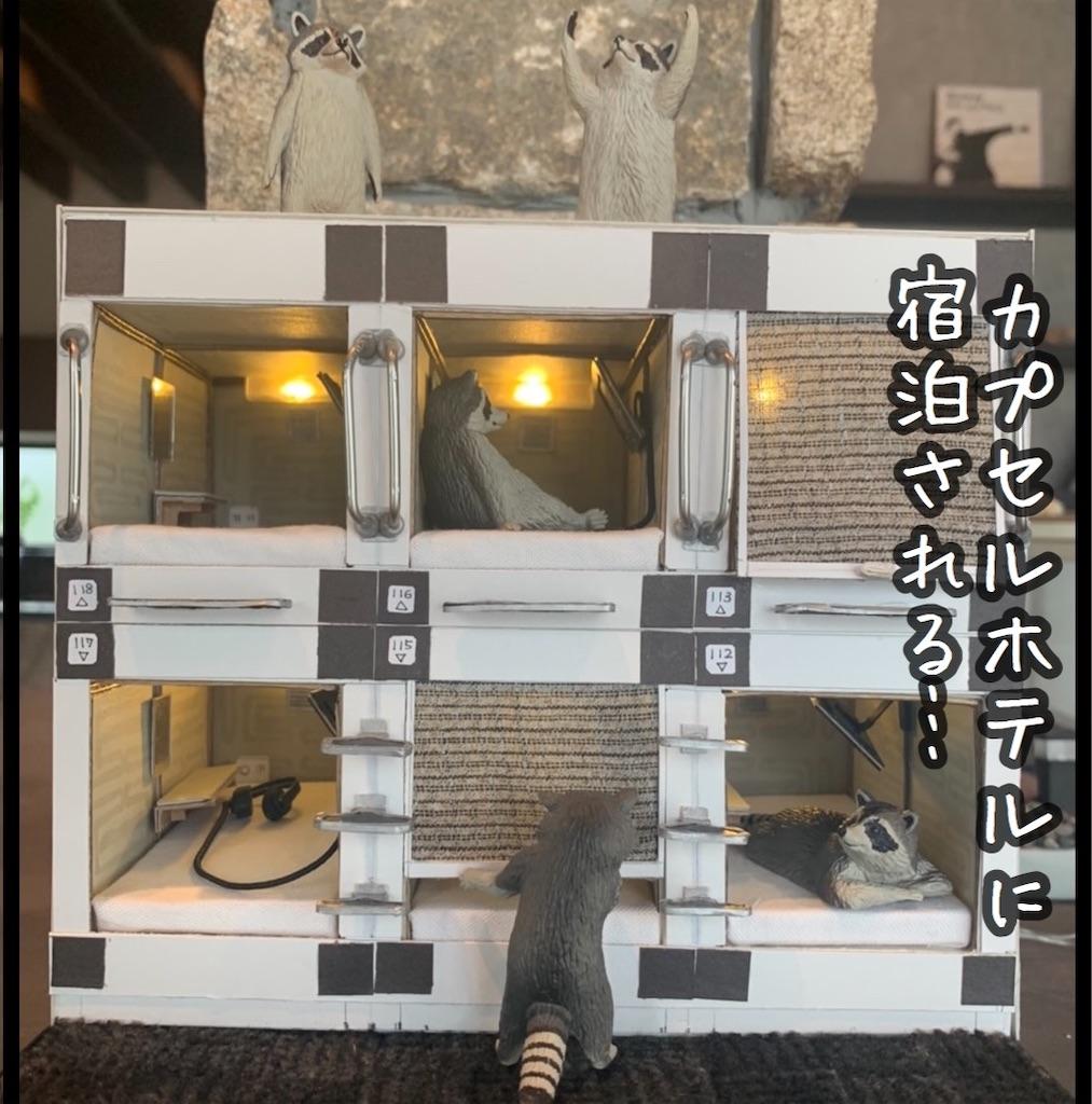 f:id:kitano-stop:20211002080203j:image