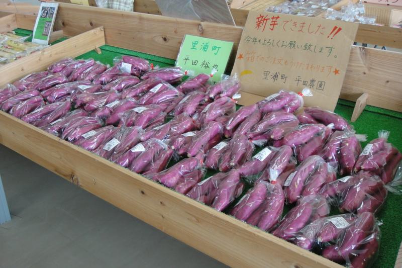 f:id:kitanoanshinichi:20100721203340j:image