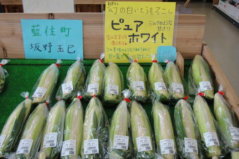 f:id:kitanoanshinichi:20100725211635j:image