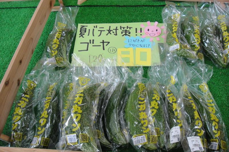 f:id:kitanoanshinichi:20100725211702j:image