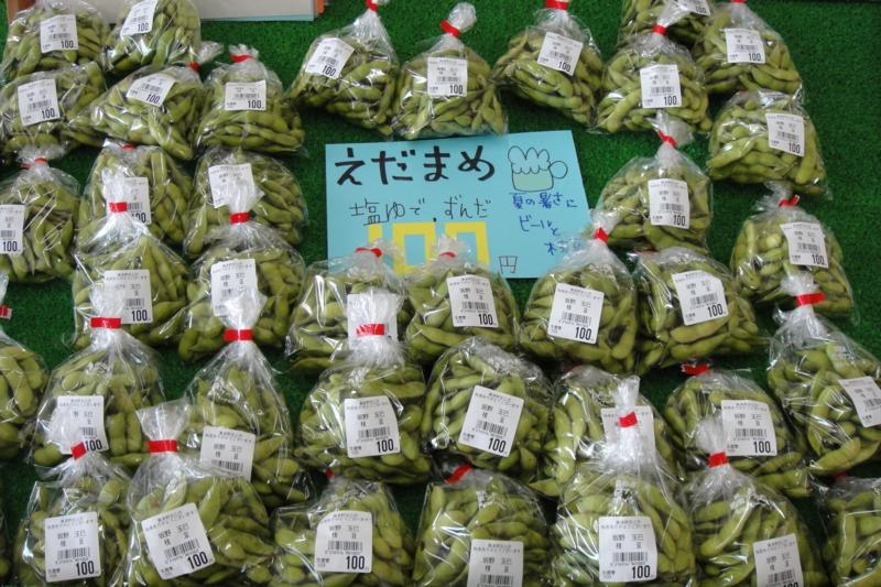 f:id:kitanoanshinichi:20100725211739j:image