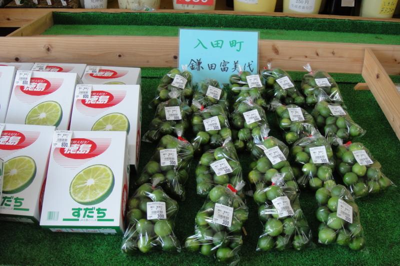 f:id:kitanoanshinichi:20100726212403j:image