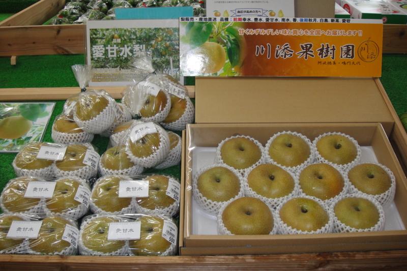 f:id:kitanoanshinichi:20100728205127j:image