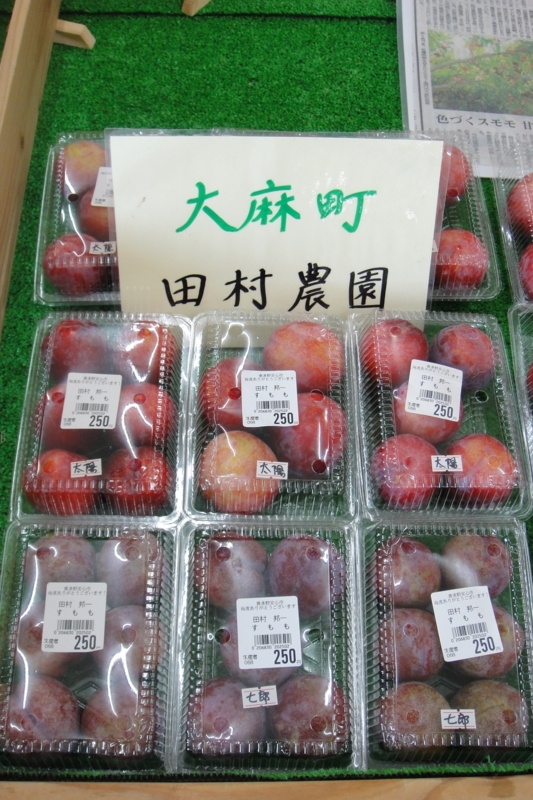 f:id:kitanoanshinichi:20100801210654j:image