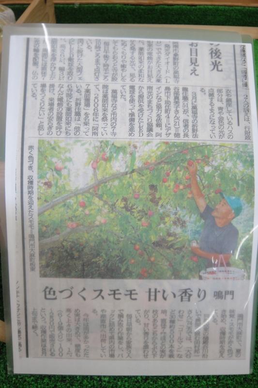 f:id:kitanoanshinichi:20100801210749j:image