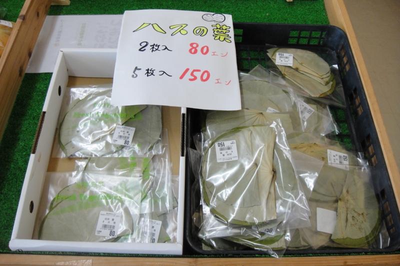 f:id:kitanoanshinichi:20100805211100j:image