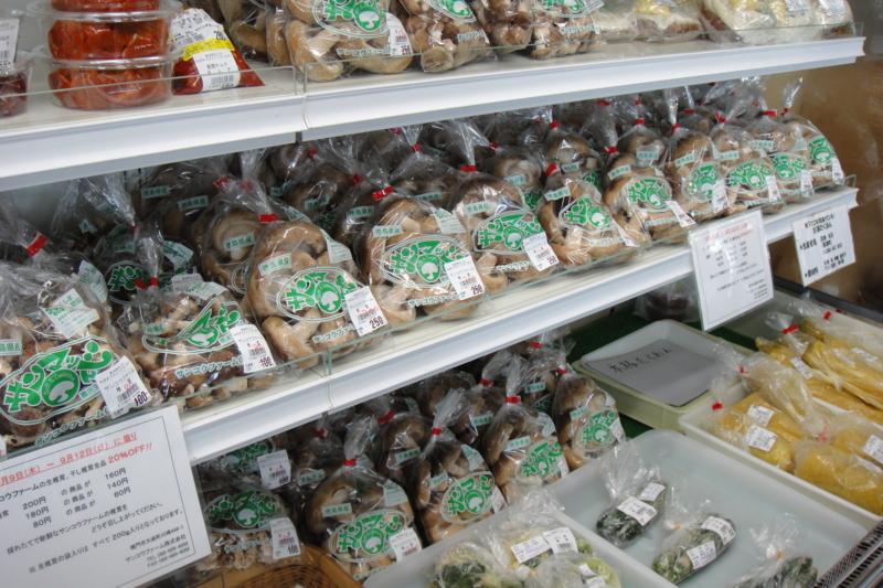 f:id:kitanoanshinichi:20100911211921j:image