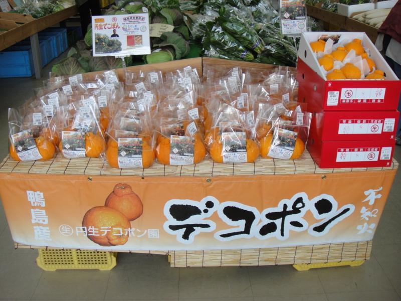 f:id:kitanoanshinichi:20110203212657j:image