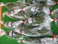 f:id:kitanoanshinichi:20110509040828j:image:medium