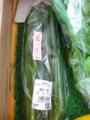f:id:kitanoanshinichi:20110624213644j:image:medium