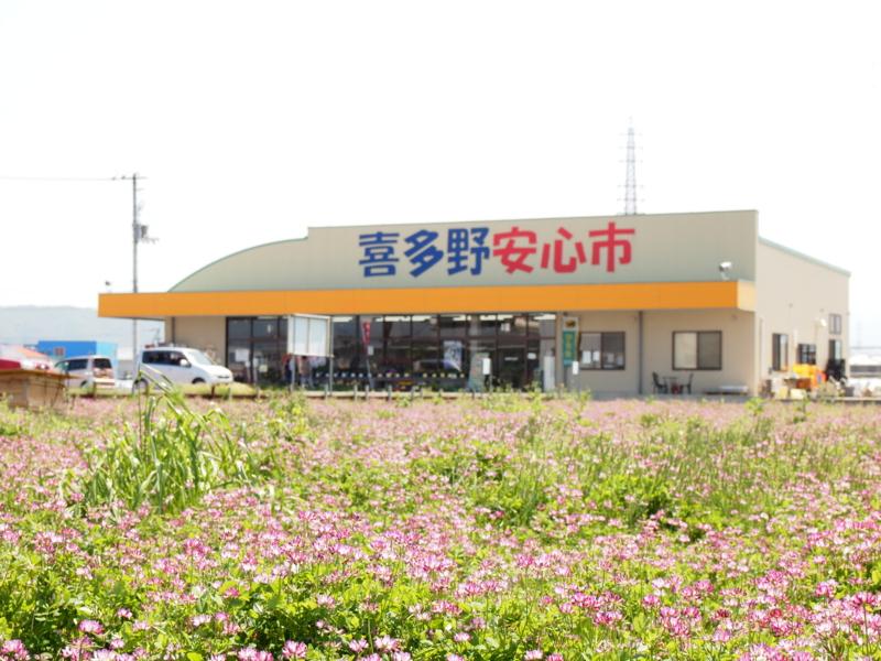f:id:kitanoanshinichi:20120505132805j:image