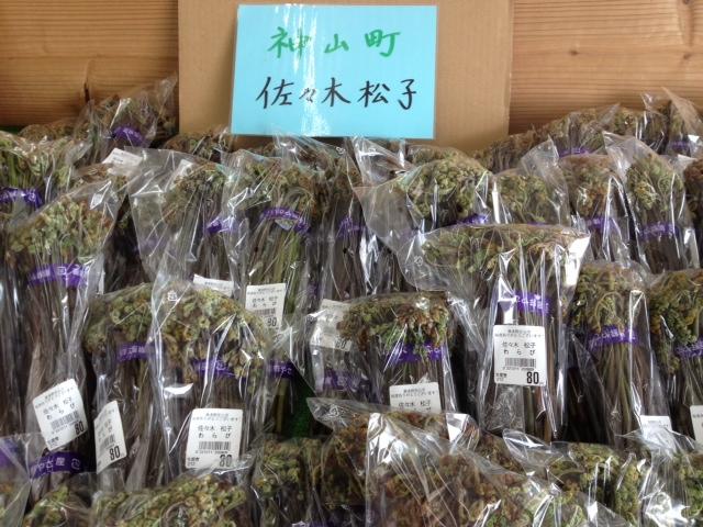 f:id:kitanoanshinichi:20120507105142j:image