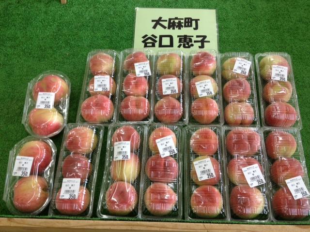 f:id:kitanoanshinichi:20120626112350j:image