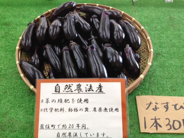 f:id:kitanoanshinichi:20120709101618j:image