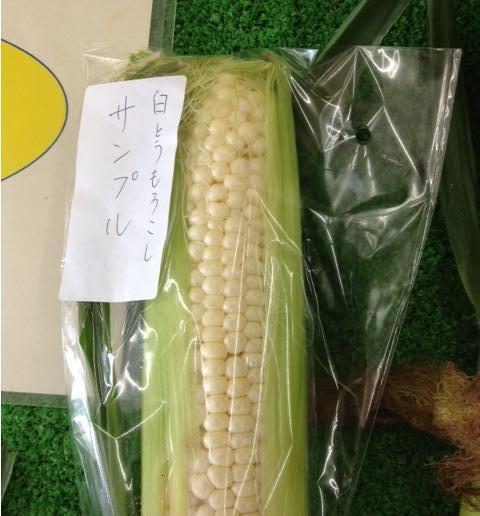 f:id:kitanoanshinichi:20120726104248j:image
