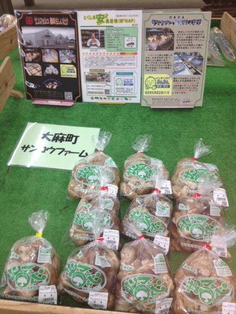f:id:kitanoanshinichi:20120917162819j:image