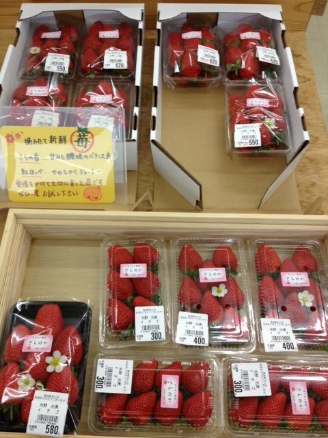 f:id:kitanoanshinichi:20130114090749j:image