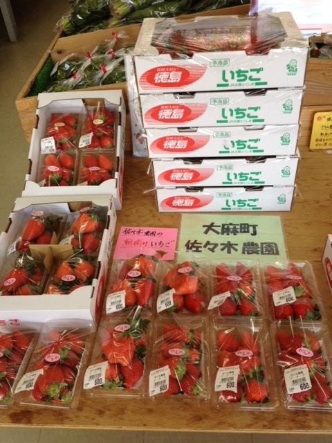 f:id:kitanoanshinichi:20130118094639j:image