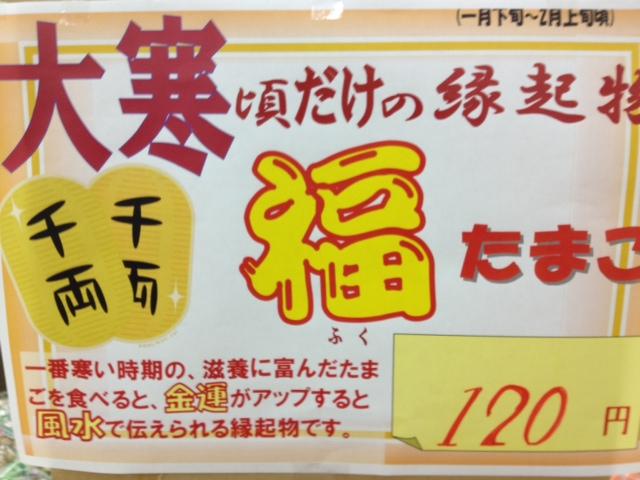 f:id:kitanoanshinichi:20130122093140j:image