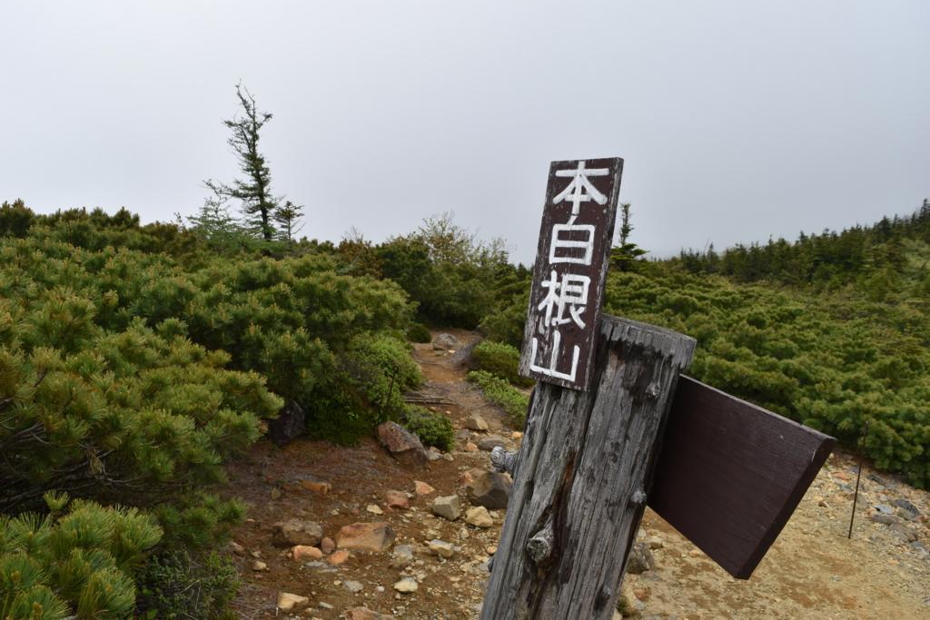 f:id:kitasennju_yamabu:20160731140218j:plain