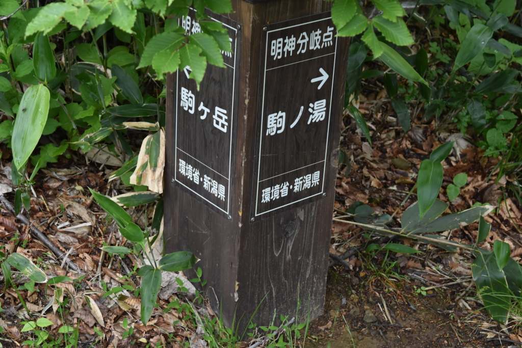 f:id:kitasennju_yamabu:20160809102241j:plain