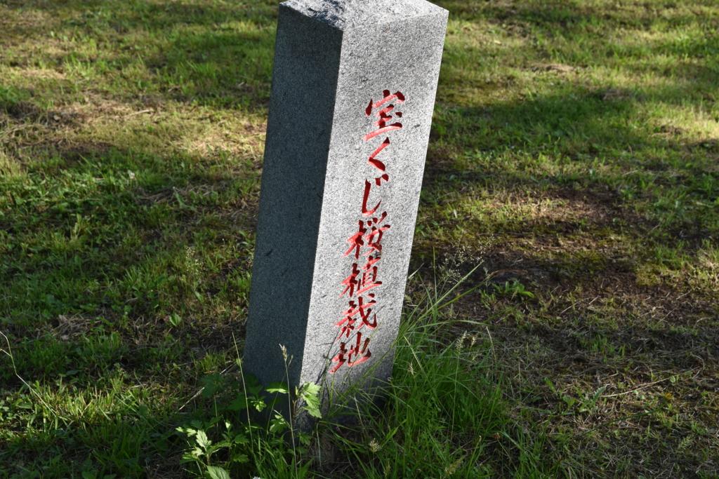 f:id:kitasennju_yamabu:20160827033236j:plain